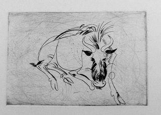 FJP1677-Gnu-ou-boi-cavalo-I-(deitado-de-frente) copy